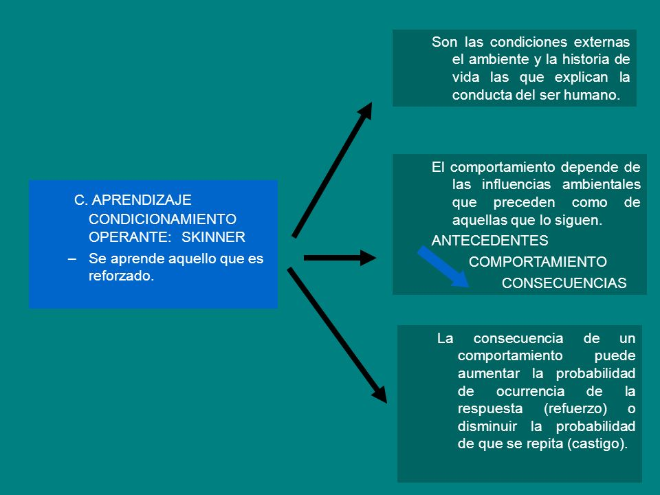 C. APRENDIZAJE CONDICIONAMIENTO OPERANTE: SKINNER