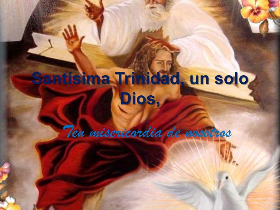 Santísima Trinidad, un solo Dios,