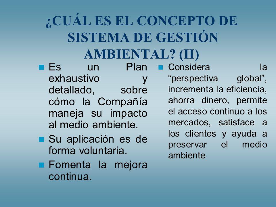 ¿CUÁL ES EL CONCEPTO DE SISTEMA DE GESTIÓN AMBIENTAL (II)