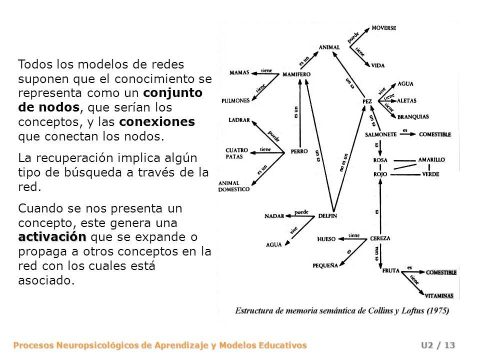 Todos los modelos de redes suponen que el conocimiento se representa como un conjunto de nodos, que serían los conceptos, y las conexiones que conectan los nodos.