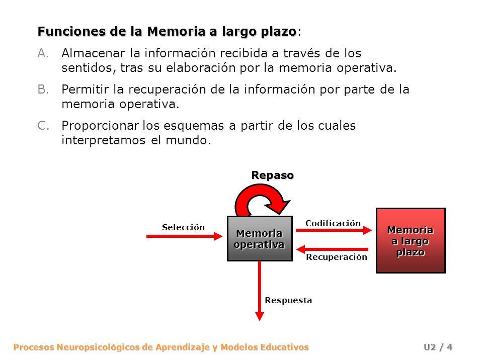 Funciones de la Memoria a largo plazo: