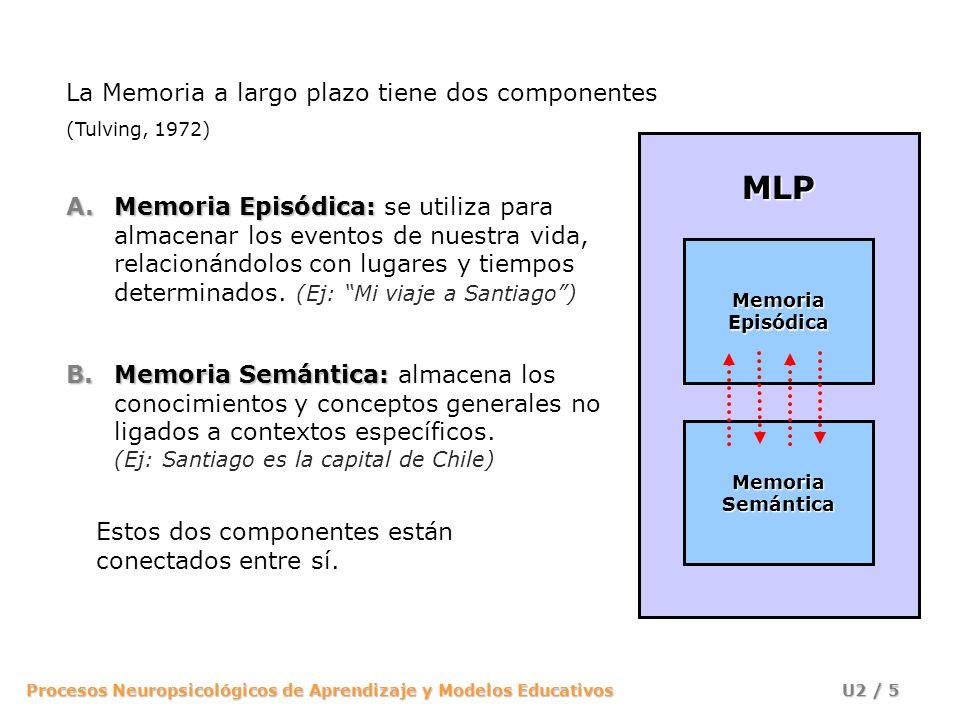 MLP La Memoria a largo plazo tiene dos componentes