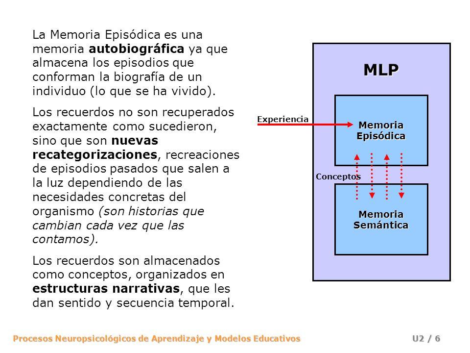 La Memoria Episódica es una memoria autobiográfica ya que almacena los episodios que conforman la biografía de un individuo (lo que se ha vivido).