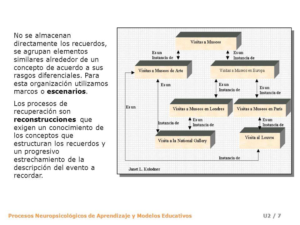 No se almacenan directamente los recuerdos, se agrupan elementos similares alrededor de un concepto de acuerdo a sus rasgos diferenciales. Para esta organización utilizamos marcos o escenarios.
