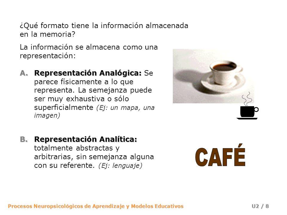 CAFÉ ¿Qué formato tiene la información almacenada en la memoria