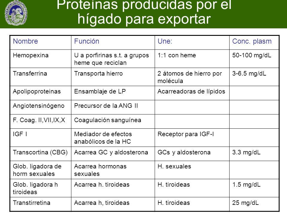 Proteínas producidas por el