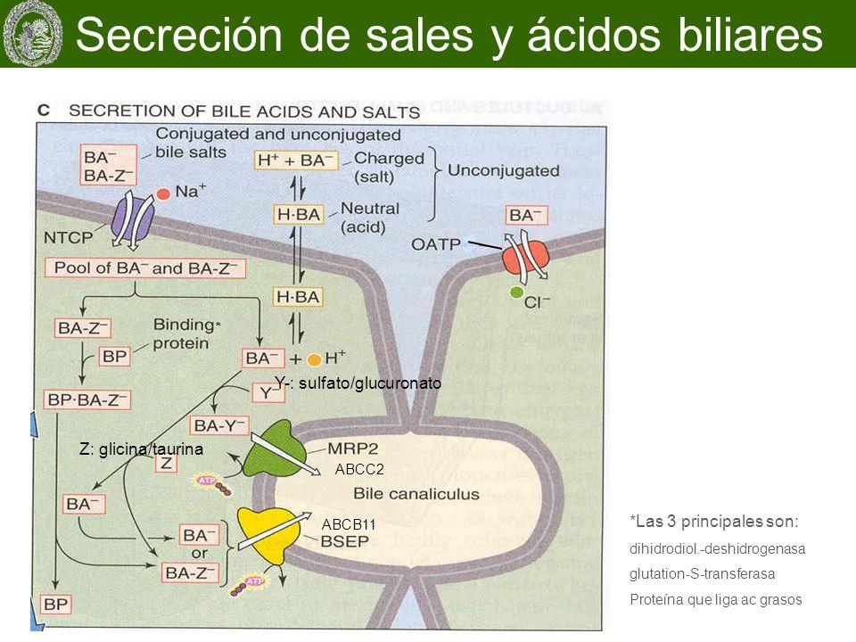 Secreción de sales y ácidos biliares