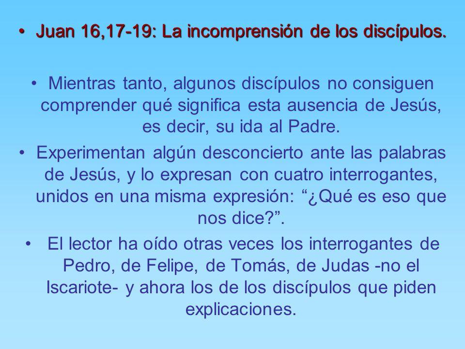 Resultado de imagen para Juan 16,17-19