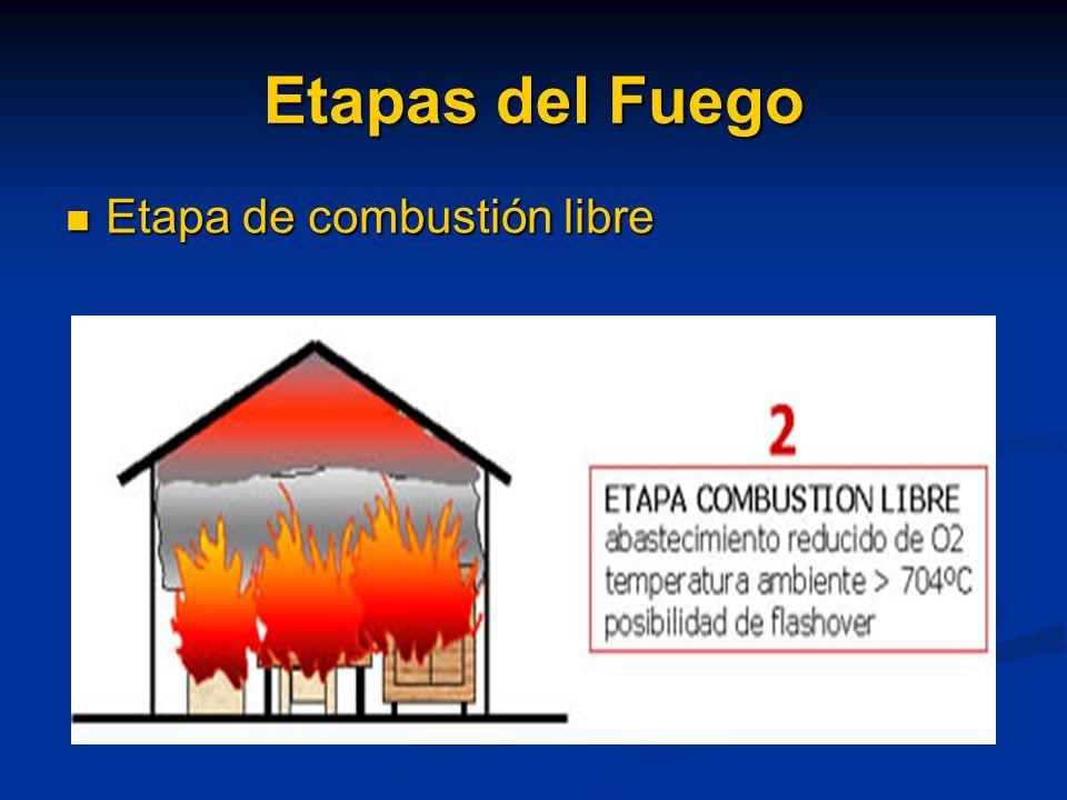 Etapas del Fuego Etapa de combustión libre