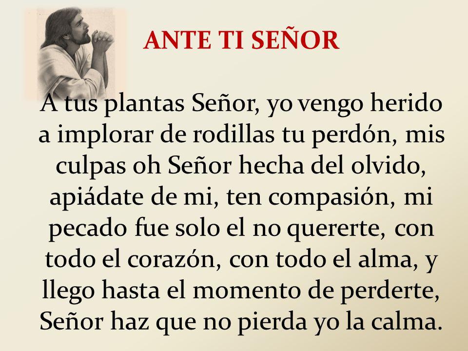ANTE TI SEÑOR