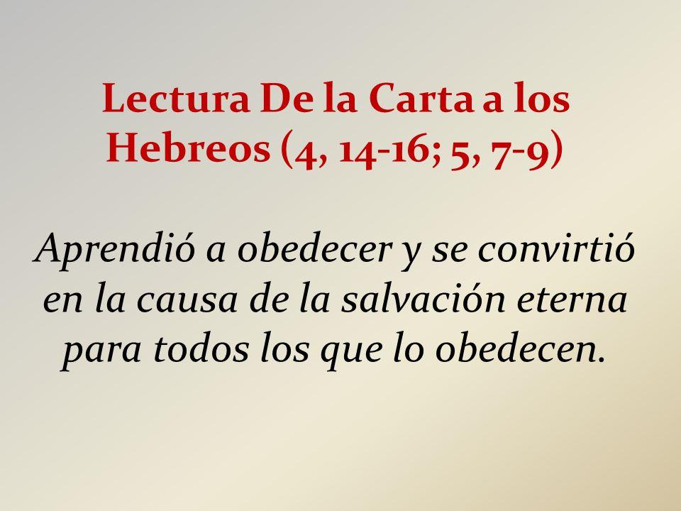 Lectura De la Carta a los Hebreos (4, 14-16; 5, 7-9)