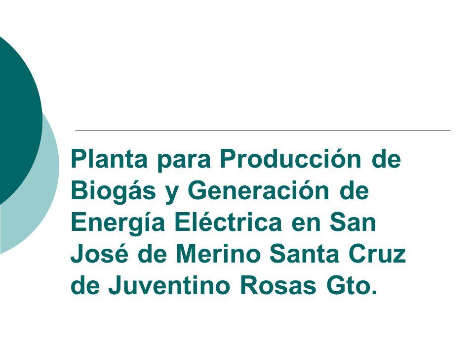 Planta para Producción de Biogás y Generación de Energía Eléctrica en San José de Merino Santa Cruz de Juventino Rosas Gto.
