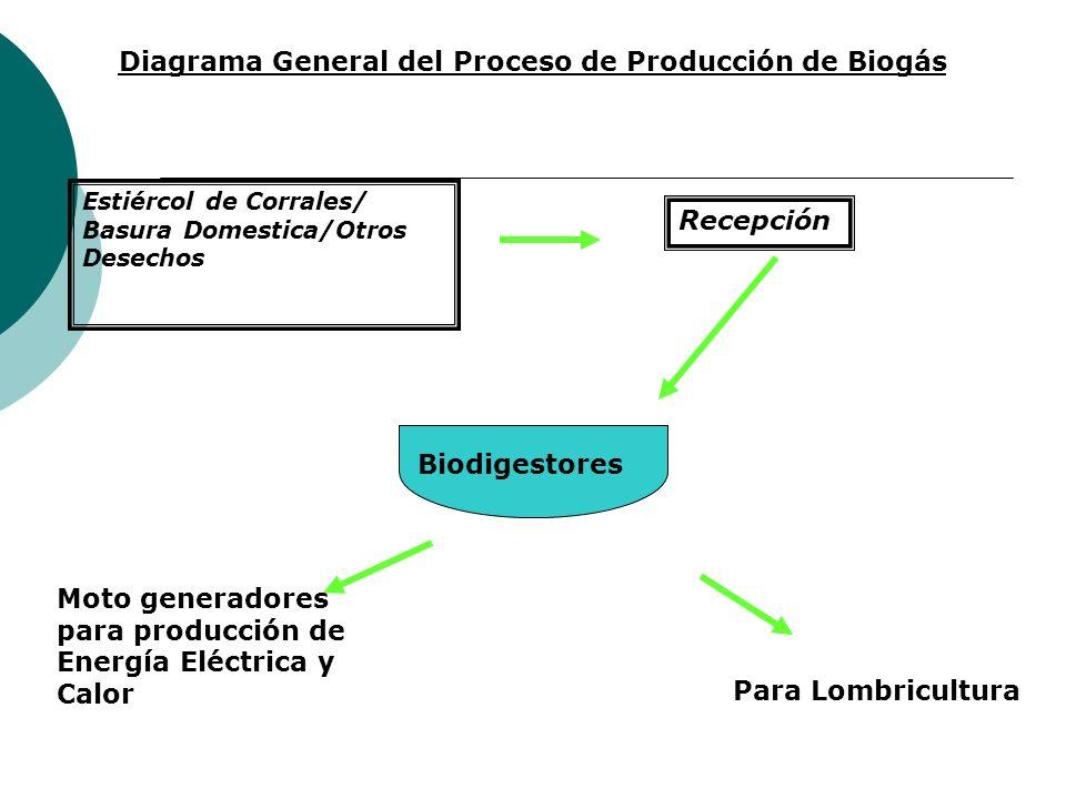 Diagrama General del Proceso de Producción de Biogás
