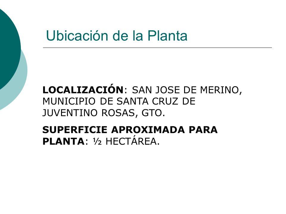 Ubicación de la Planta LOCALIZACIÓN: SAN JOSE DE MERINO, MUNICIPIO DE SANTA CRUZ DE JUVENTINO ROSAS, GTO.