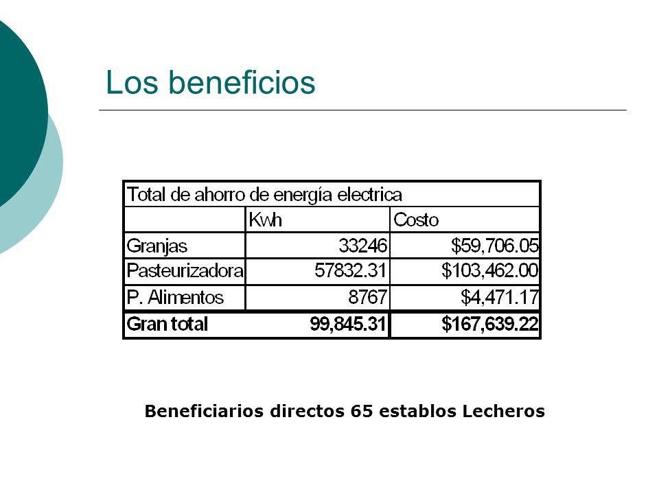 Los beneficios Beneficiarios directos 65 establos Lecheros