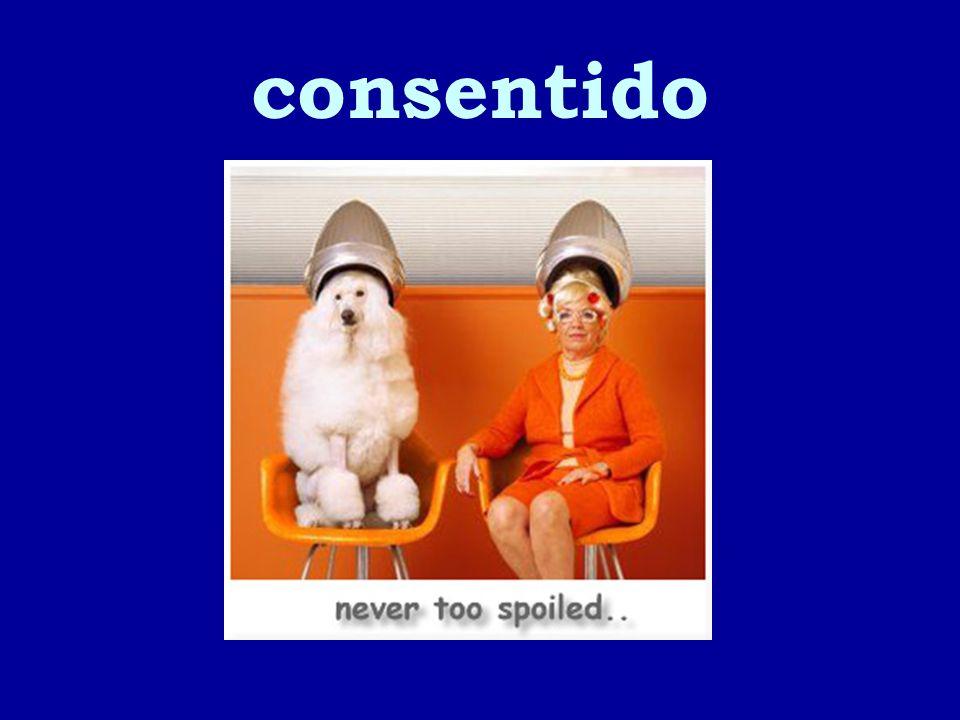 consentido