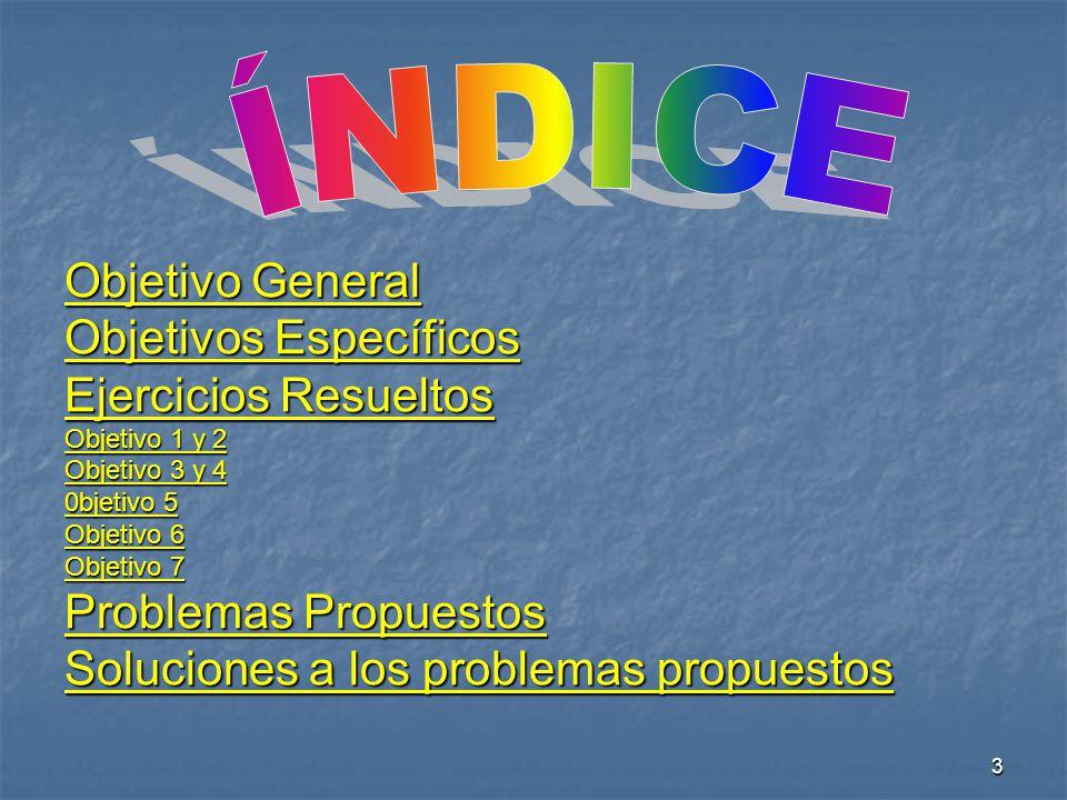 ÍNDICE Objetivo General Objetivos Específicos Ejercicios Resueltos