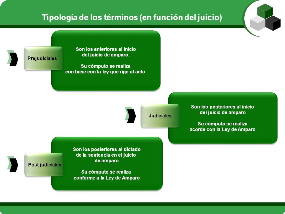Tipología de los términos (en función del juicio)