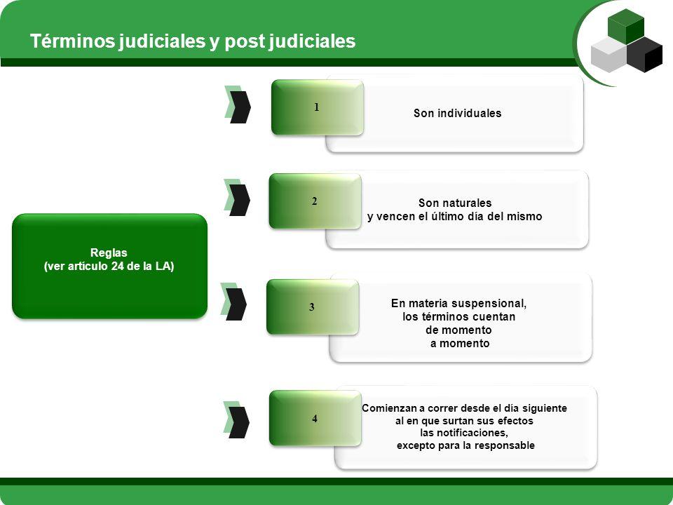 Términos judiciales y post judiciales
