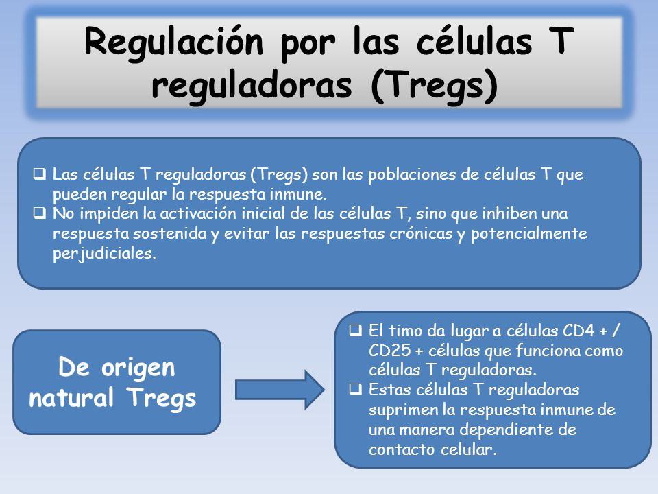 Regulación por las células T reguladoras (Tregs)