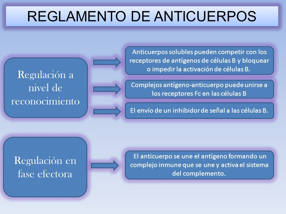 REGLAMENTO DE ANTICUERPOS