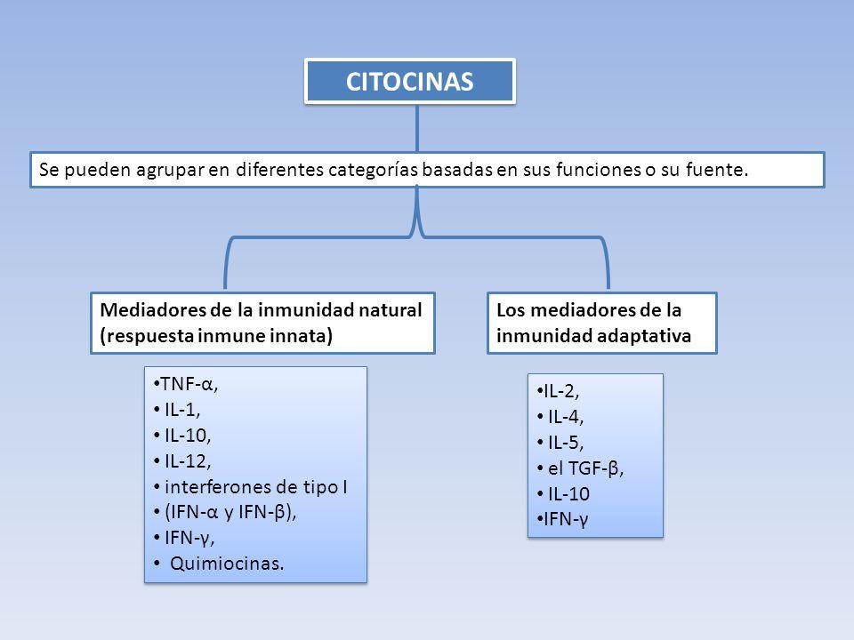 Citocinas Se pueden agrupar en diferentes categorías basadas en sus funciones o su fuente.