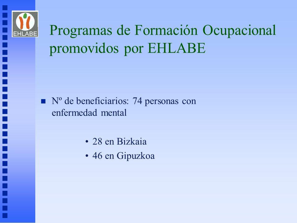 Programas de Formación Ocupacional promovidos por EHLABE