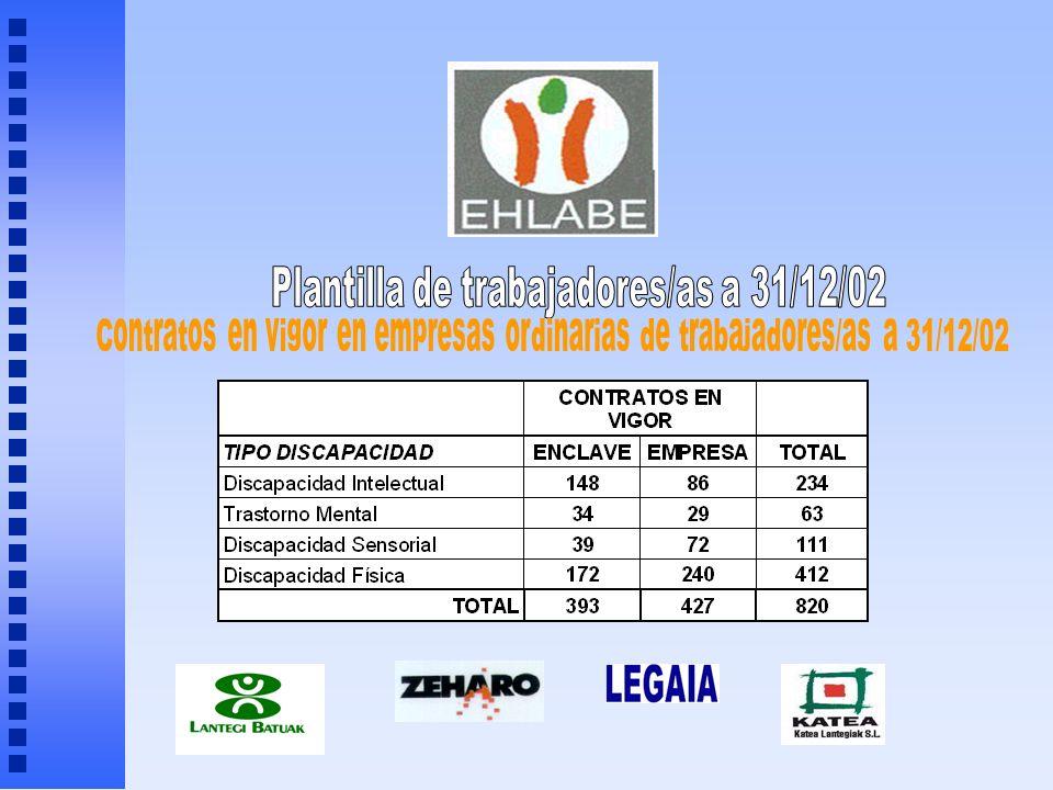 Plantilla de trabajadores/as a 31/12/02