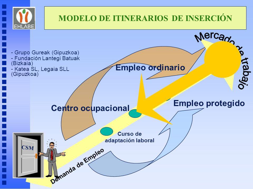MODELO DE ITINERARIOS DE INSERCIÓN Curso de adaptación laboral