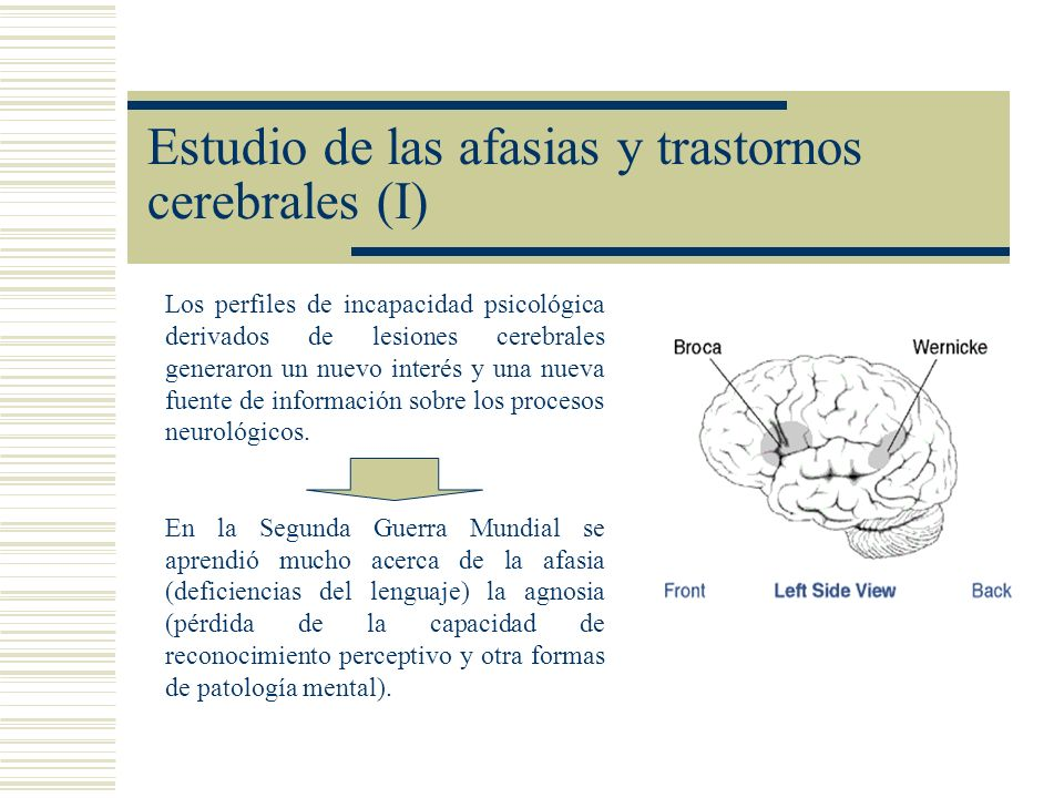 Estudio de las afasias y trastornos cerebrales (I)