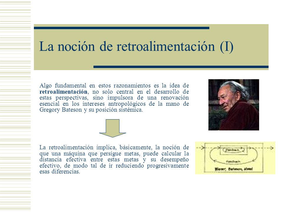 La noción de retroalimentación (I)