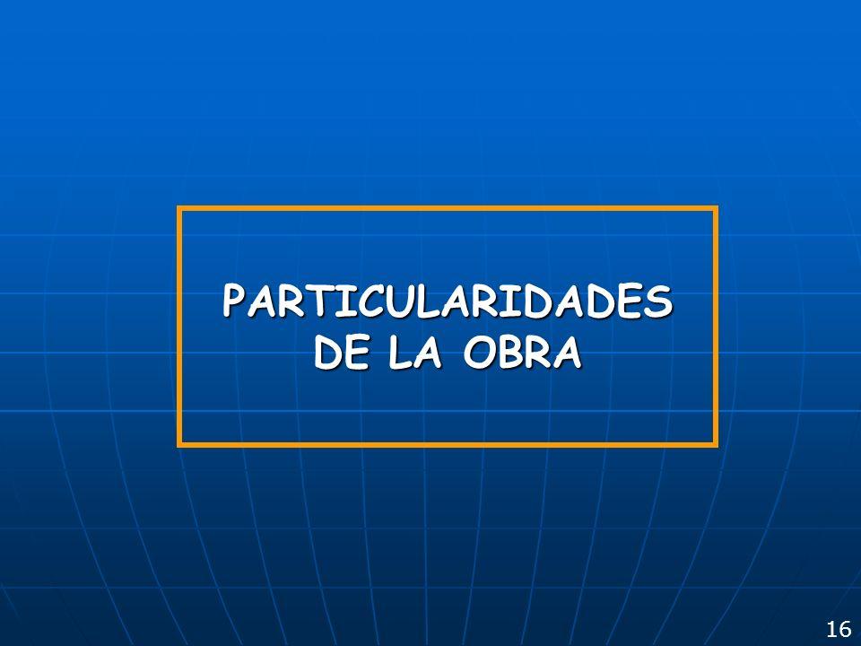 PARTICULARIDADES DE LA OBRA