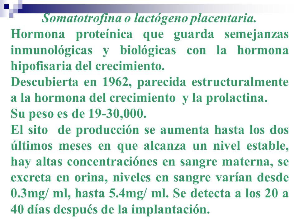 Somatotrofina o lactógeno placentaria.