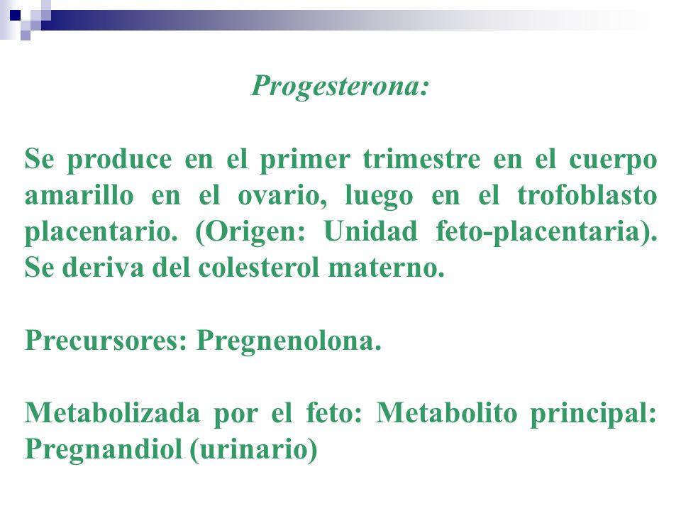 Progesterona: