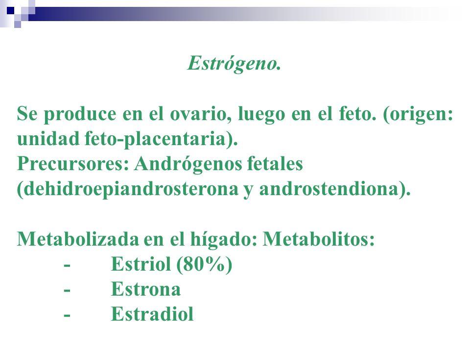 Estrógeno. Se produce en el ovario, luego en el feto. (origen: unidad feto-placentaria).