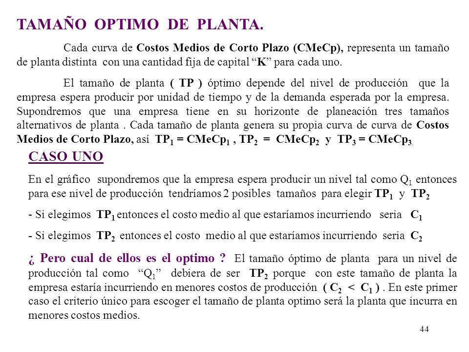 TAMAÑO OPTIMO DE PLANTA.