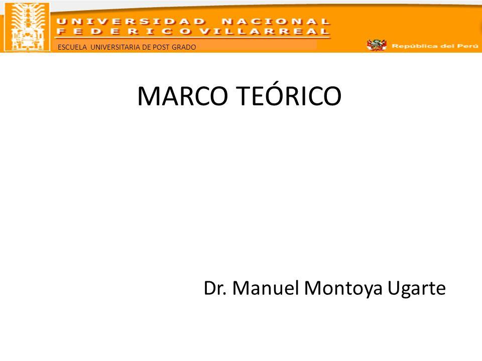 MARCO TEÓRICO Dr. Manuel Montoya Ugarte