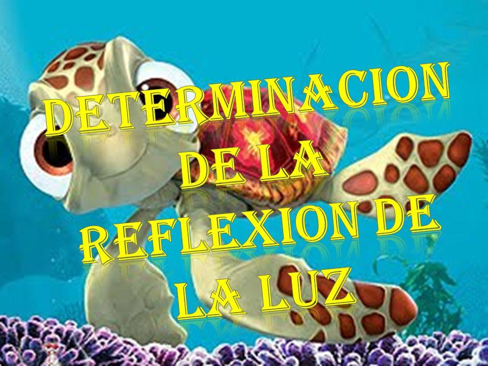 DETERMINACION DE LA REFLEXION DE LA LUZ