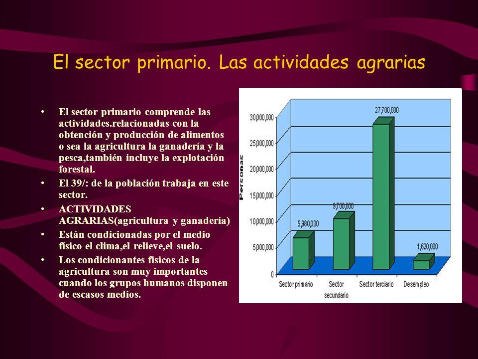 El sector primario. Las actividades agrarias