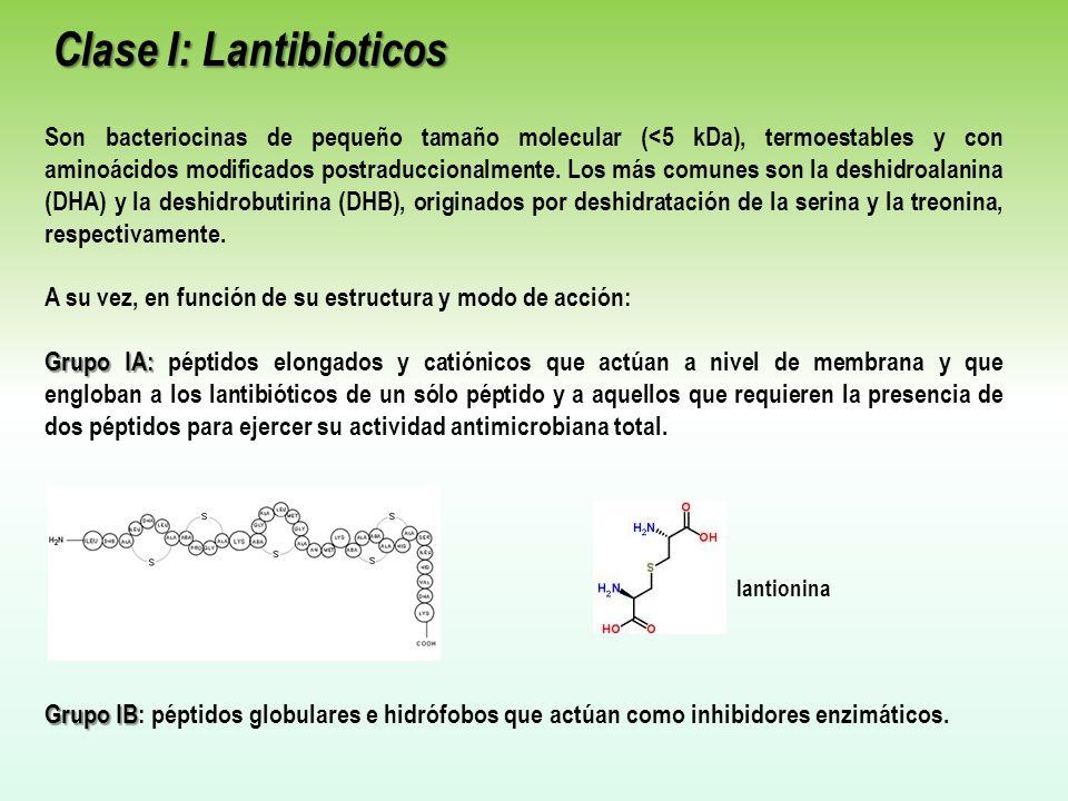 Clase I: Lantibioticos