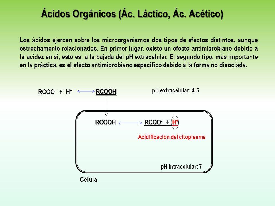 Ácidos Orgánicos (Ác. Láctico, Ác. Acético)