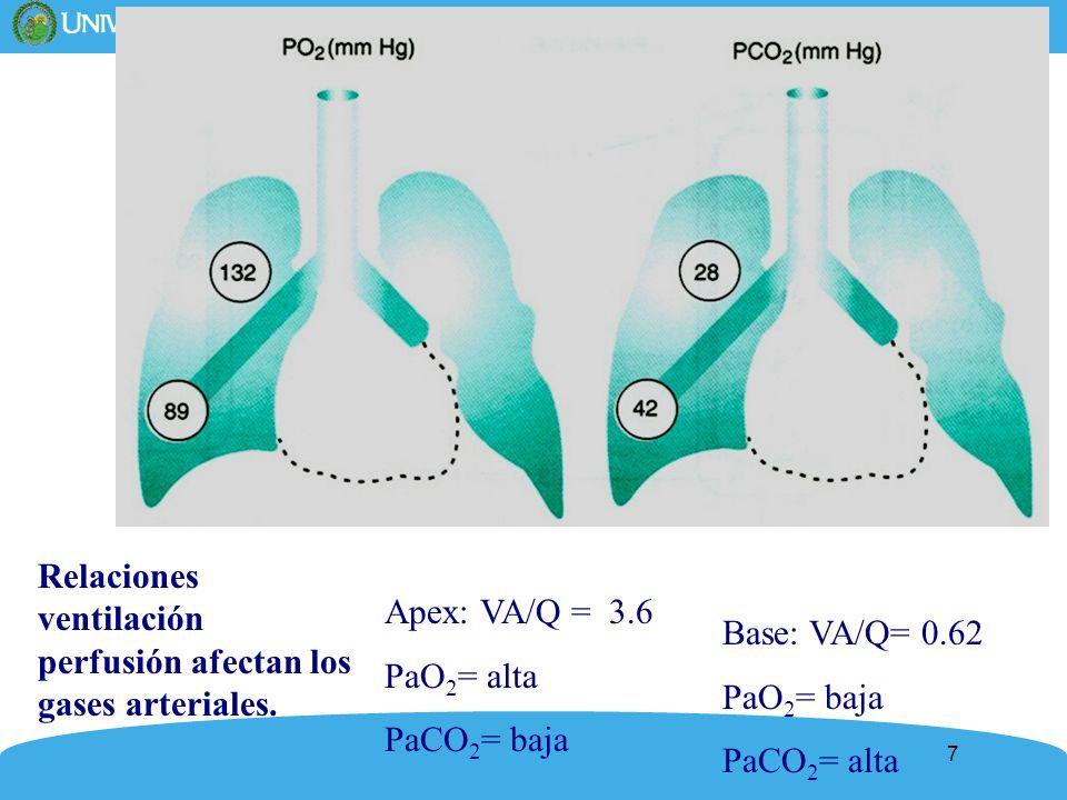 Relaciones ventilación perfusión afectan los gases arteriales.