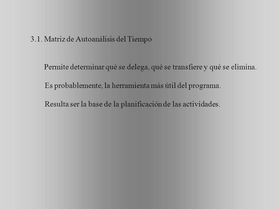 3.1. Matriz de Autoanálisis del Tiempo