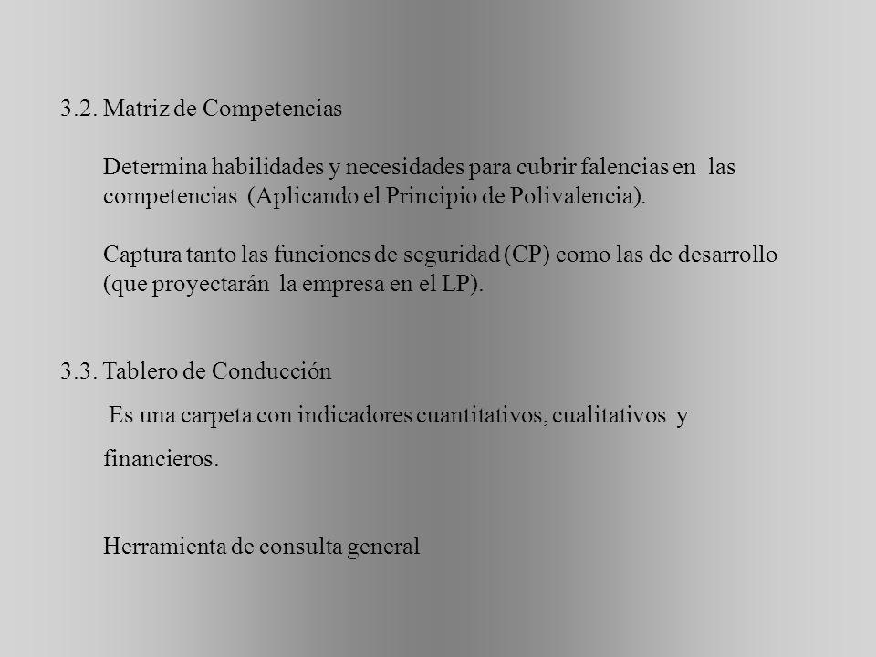 3.2. Matriz de Competencias