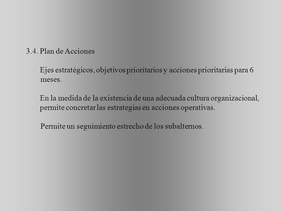 3.4. Plan de Acciones Ejes estratégicos, objetivos prioritarios y acciones prioritarias para 6 meses.
