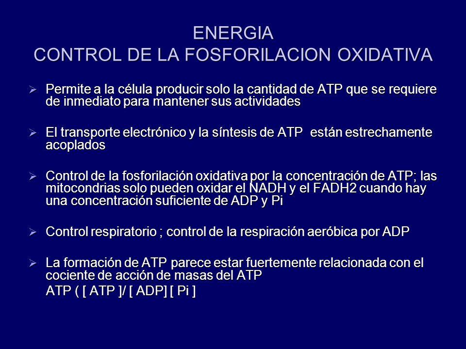 ENERGIA CONTROL DE LA FOSFORILACION OXIDATIVA