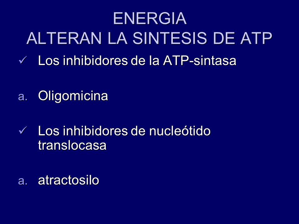 ENERGIA ALTERAN LA SINTESIS DE ATP