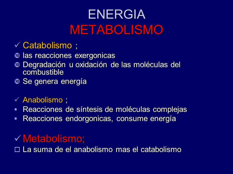 ENERGIA METABOLISMO Metabolismo; Catabolismo ;