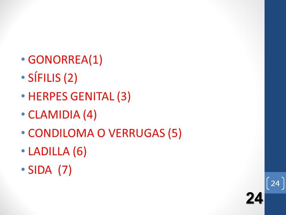 24 GONORREA(1) SÍFILIS (2) HERPES GENITAL (3) CLAMIDIA (4)