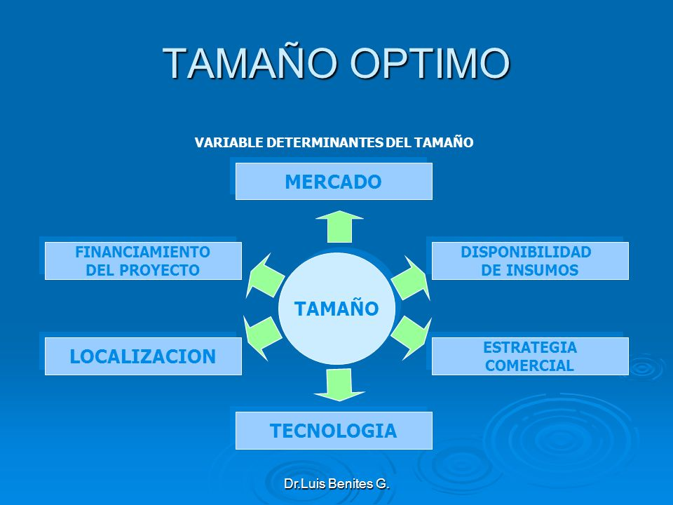 VARIABLE DETERMINANTES DEL TAMAÑO